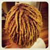 Double Strand twist starter locs & golden blonde color